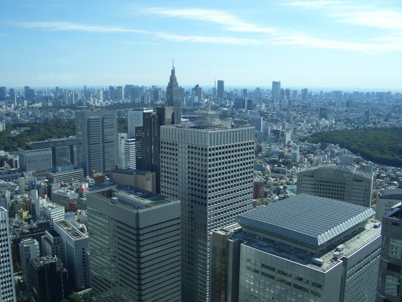 <p>A view from the observation deck of other Shinjuku buildings</p>