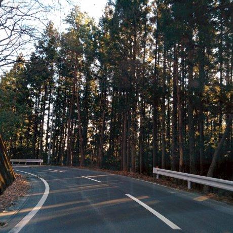 Mount Haruna, Gunma