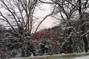The red iron bridges of Gunma