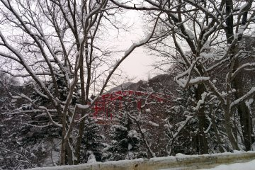 <p>The red iron bridges of Gunma</p>