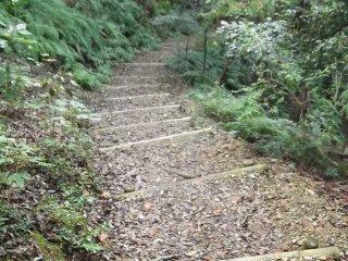 Alguns dos caminhos sobem e descem colinas
