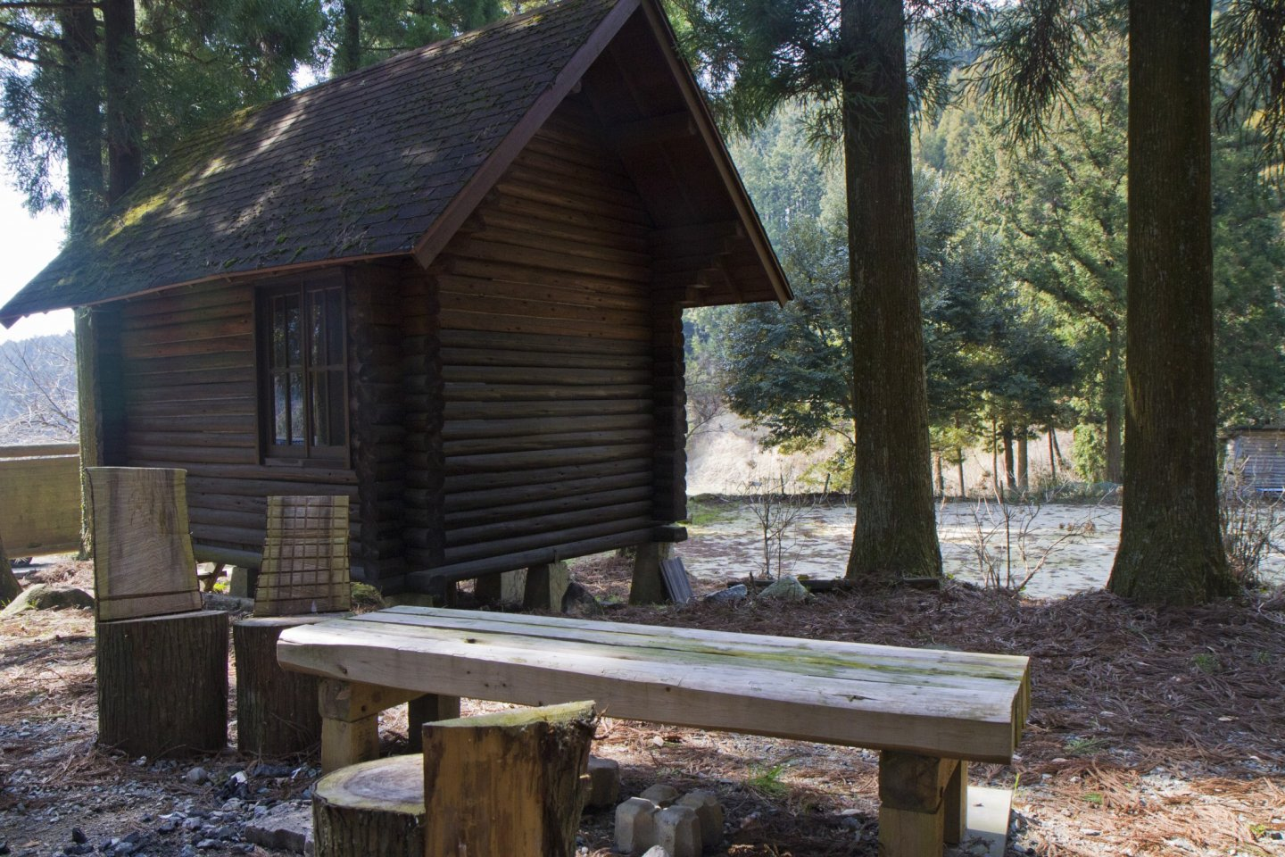 One of a half-dozen little log cabins
