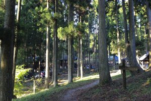 The trees keep the camp cool in summer