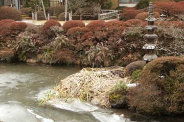 <p>Icy view of Shoyoen Garden, part of the Rinno-ji temple complex in Nikko</p>