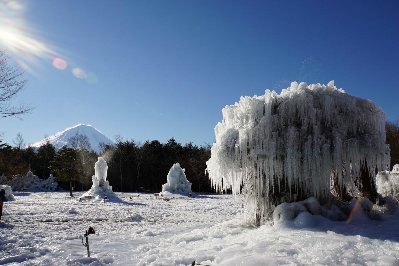 Assombrosa vista do Mt. Fuji e esta escultura de árvore de gelo