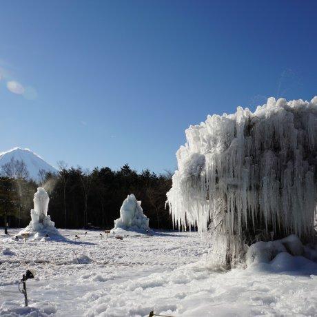 西湖樹氷まつり