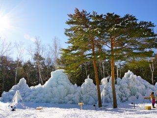 Beautiful winter wonderland backdrop