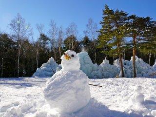 Создайте своего собственного ледяного снеговика