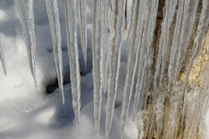 Icicle pops!