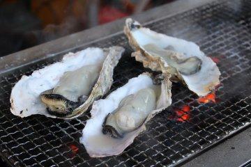 หอยนางรมย่างในชิโอะกะมะ