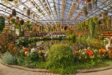 <p>The vivid flowers that make up this 8,000sq meter Greenhouse is just gorgeous</p>