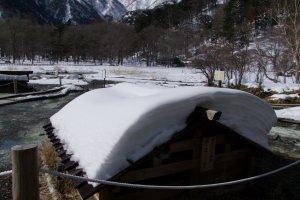 Snow-covered marsh