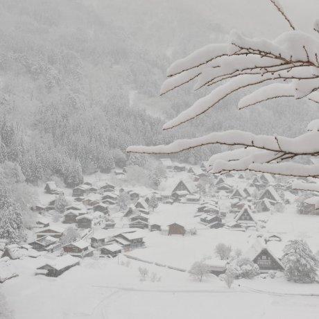 눈오는 시라카와고