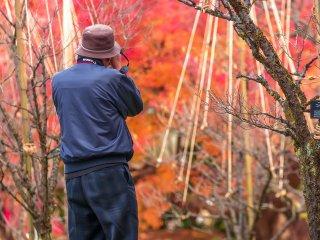 Un photographe capture la saison