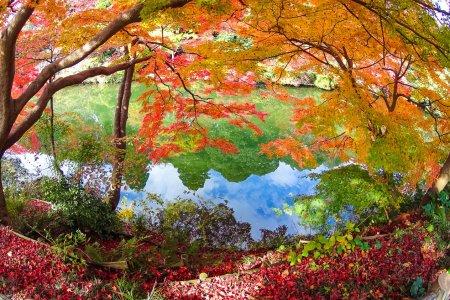 Le Parc Kojo de Takaoka