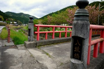 <p>A red bridge surrounded by late-blooming cherry trees</p>