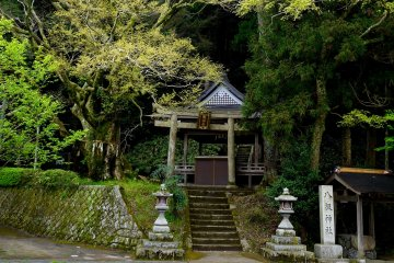 <p>Small shrine beside the road</p>
