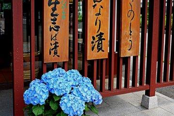 Destination Ohara