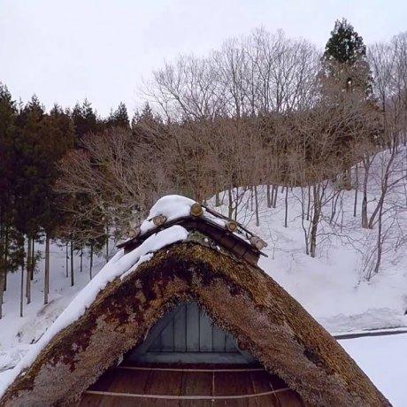후쿠이에 있는 영원한 로맨스의 숲