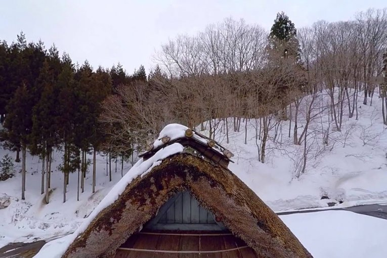 Лес бесконечной романтики в Фукуи