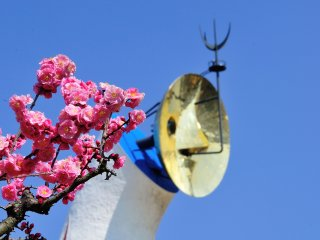Tower of the Sun and 'Yae-ume' plum blossoms under the bright blue sky!