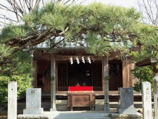 This small shrine has its own hina doll display.