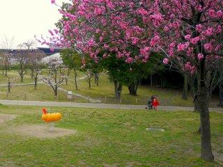 子どもの遊び場