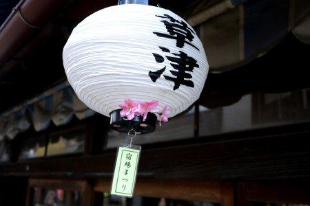 草津(滋賀県)の桜