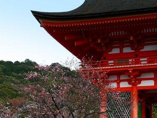 The red gate of Kiyomizudera