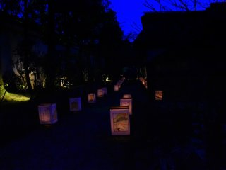 Luzes suaves de lanternas a convidar os visitantes para uma noite mágica