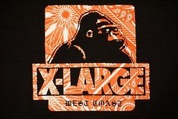<p>X-Large t-shirt</p>