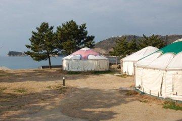 <p>Mongolian yurt village</p>