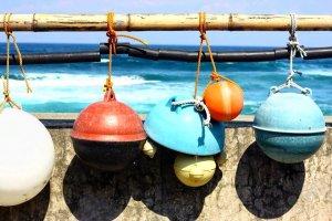 Bóias de pesca coloridas estão entre os detritos que dão à costa