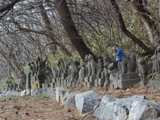 These stone foxes are said to be from all over Japan. When they have become damaged or just became old(serving their duty) they are sent to rest at this shrine.