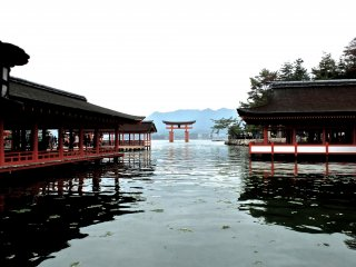 The world famous torii gate stands in the middle of the bay