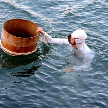 Pearl Divers at Mikimoto Island