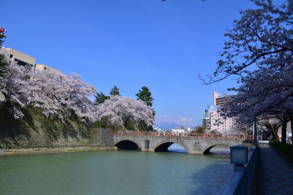 春の青空の下眺める御本城橋