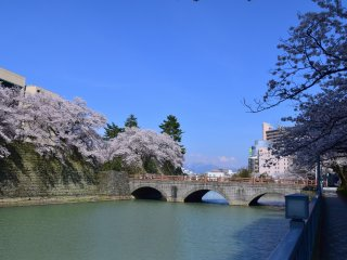 View of the castle bridge under the blue sky in spring