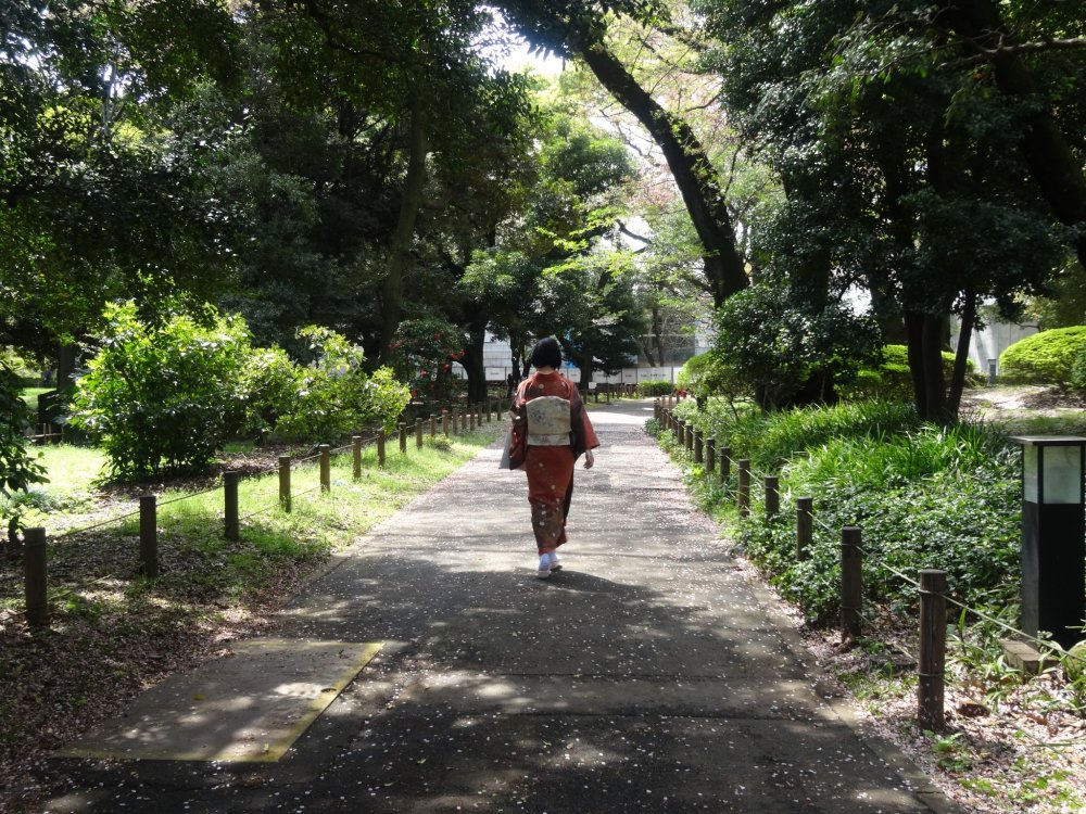 Seorang wanita dalam kimono berjalan-jalan keliling kebun
