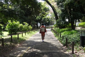 Сад в Национальном музее Токио