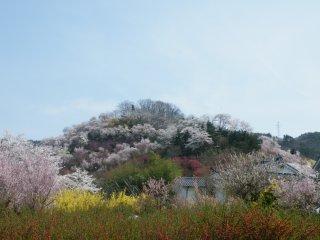 Ini adalah sekilas panorama salah satu tempat yang ada di gunung