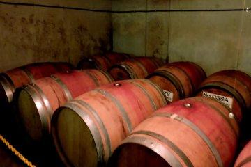 <p>Barrels full of wine</p>