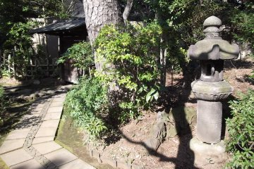 A gate and a lantern in the garden