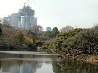 Rất dễ để quên rằng bạn đang ở giữa thành phố, cho đến khi bạn nhìn thấy các tòa nhà nhô lên cao sau hàng cây.