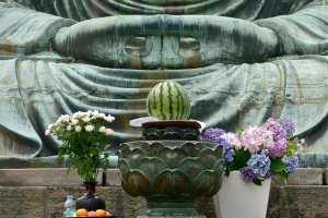 Flowers and seasonal fruits offered to Daibutsu