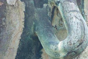 写真4:ピアスの穴