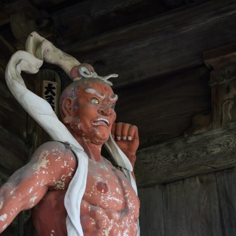 Shikoku Pilgrimage: Temples No. 8 & 9