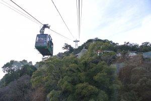 可乘登山覽車上千光寺山,只需約10分鐘就到達。