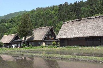 Walking around Shirakawa-go