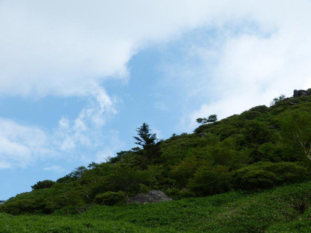 The blue sky suddenly appears